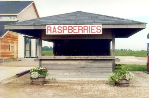 First Raspberry Stand